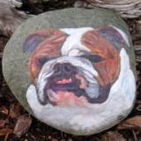 Pet Portrait Rocks by Lisa