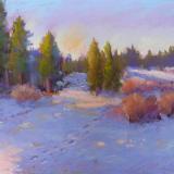 Nancy Misek