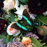 Floret Floral Designs