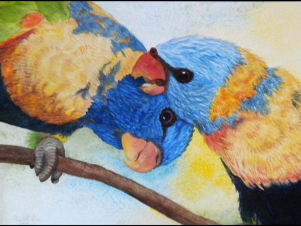 Parrots At Play Pam S Art