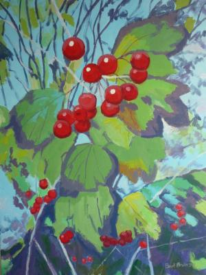 Guelder Rose berries at Bickleigh