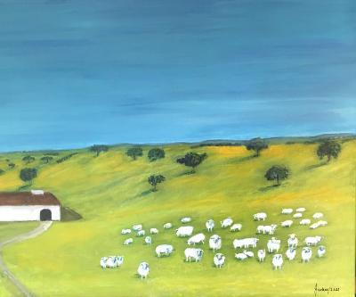 Alentejo sheep