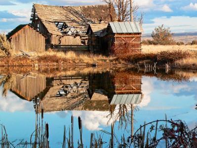 The Barn Reflection on Kelly's Century Farm