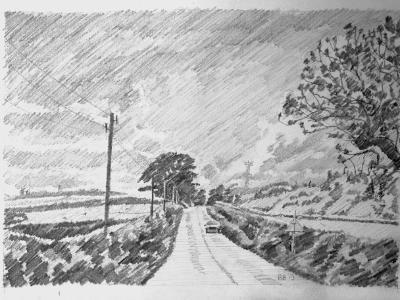 A Devon road near Bishmill