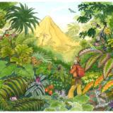 Volcano Book Art