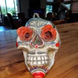 2 Son Skull