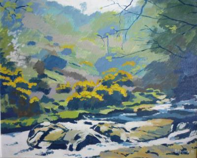 Along the East Okement river, Dartmoor