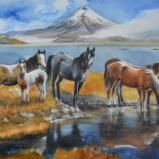 Horse watercolors
