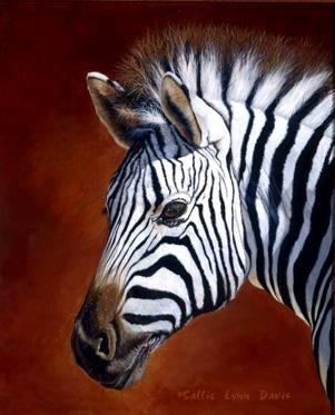 Damara Zebra Portrait
