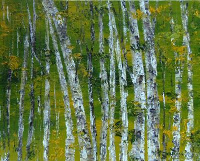 birch 7