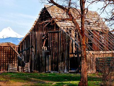 Schrieber Homestead Barn & Mt. Hood