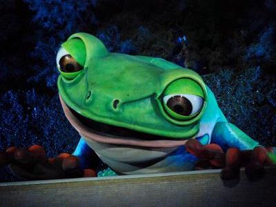Video Clip: Steve Wynn's Singing Frog