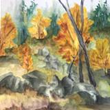 Autumn in the Lagunas