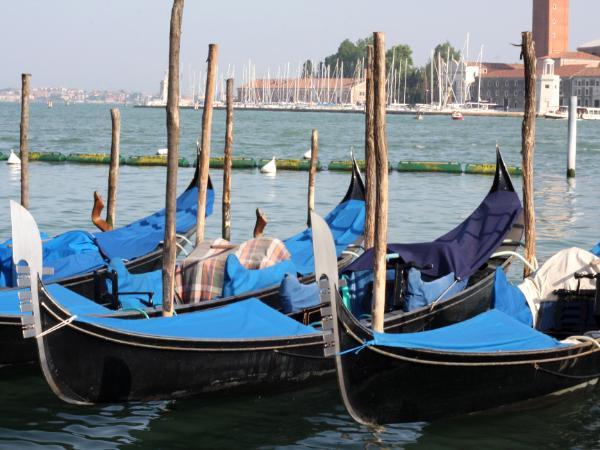 Blue Gondolas in Venice