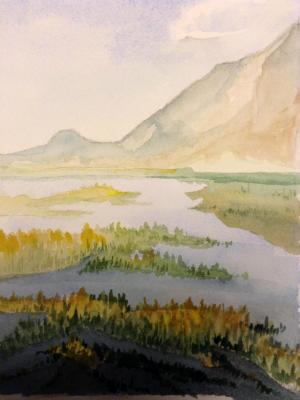 Saltgrass Marsh, Owens Lake Playa