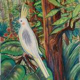 Cockatiel in Jungle