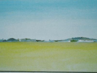 Fields of the Alentejo