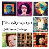 Fiberarts3030