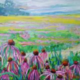 March of the Pale Purple Coneflowers