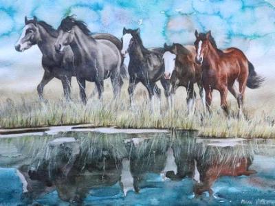 Wild horses of Wyoming, 35cm x 50cm, 2014