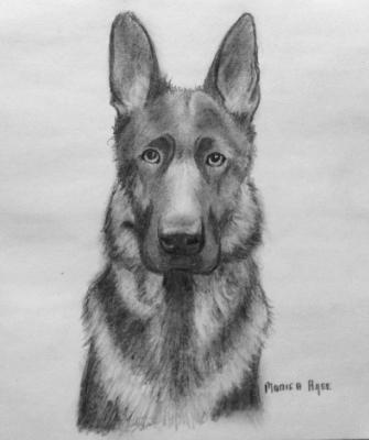 Shepherd 8x10 toned paper in graphites