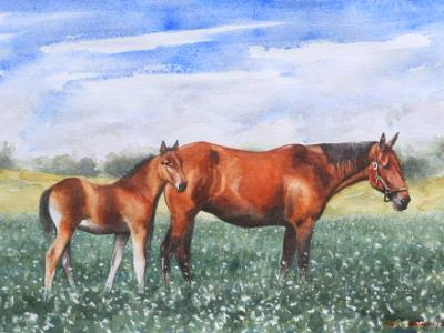 Equine maternity, 80cm x 60cm, 2014
