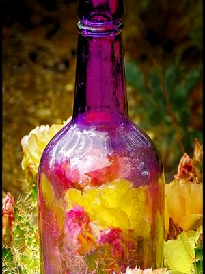 Bottle # 1