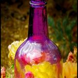 ANTIQUE BOTTLES & GLASS