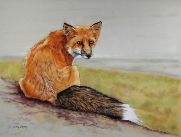 Fox Turn