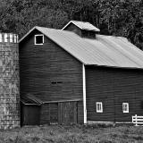 Rural Farms of MN