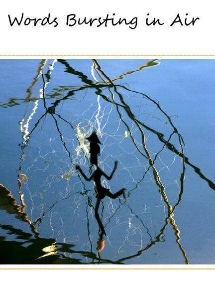 Woman in a Net