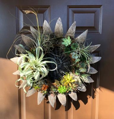 """""""Succulent"""" Living Wreath"""
