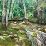 Norton Creek