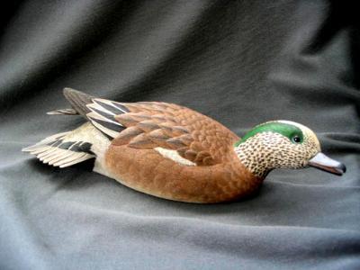Half Size American Widgeon