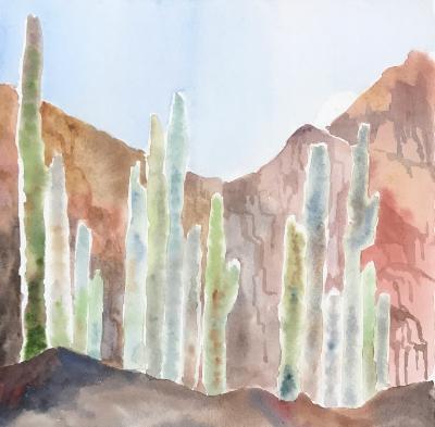 Cacti (backlit) I