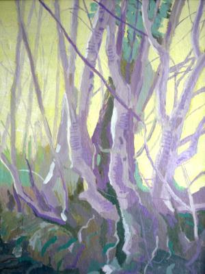 A Dartmoor hedge (near Widecombe)