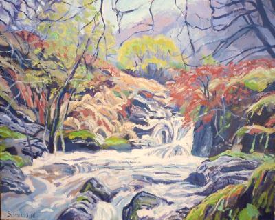 Rapids at the East Okement River, Dartmoor