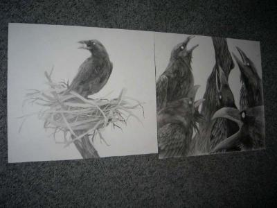 Intermediate Drawing at UCSD, Diptych (Charcoal)