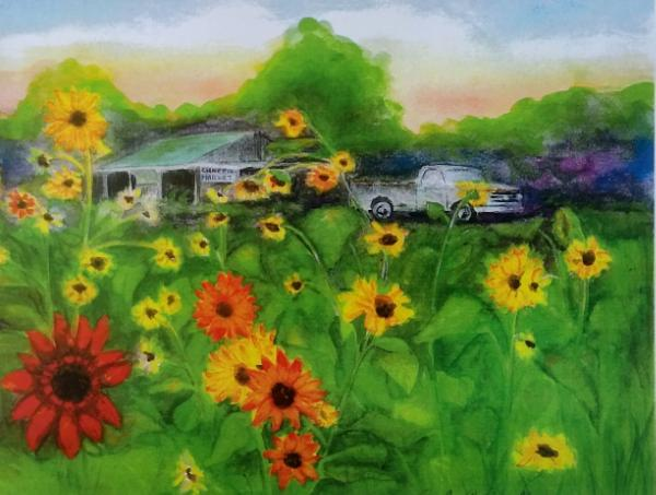 Old Ford and Sunflowers