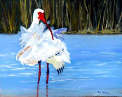 Ruffled Feathers - Ibis