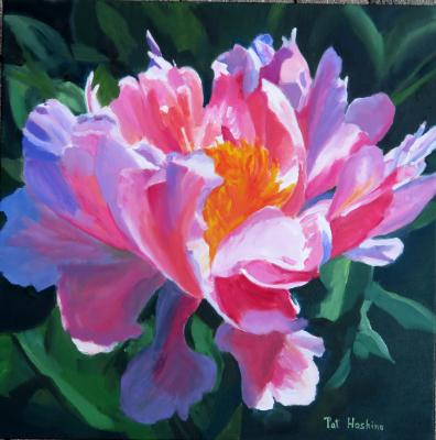 Pink & White Peony - OIL - 20X20 SOLD