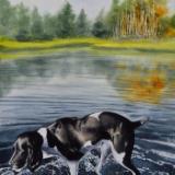 Dog in the lake Mcdonald, 38cm x 56cm, 2020