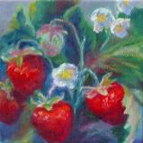 Michigan Strawberries