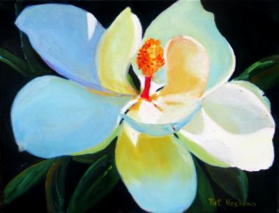 magnolia - oil - 11x14