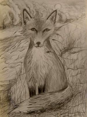 Fox in Landscape