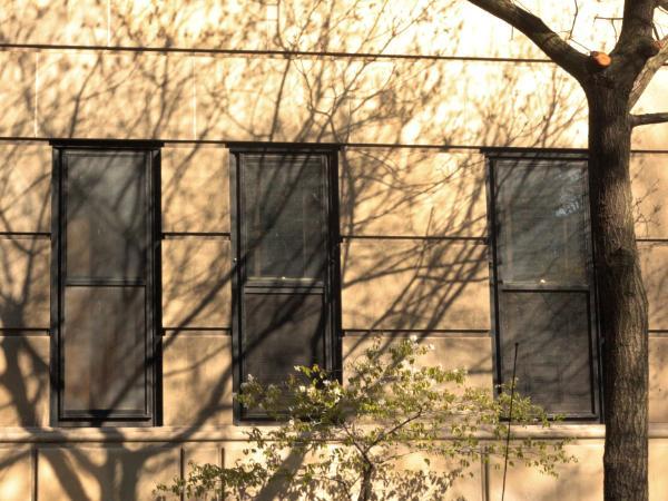Shadows on Building