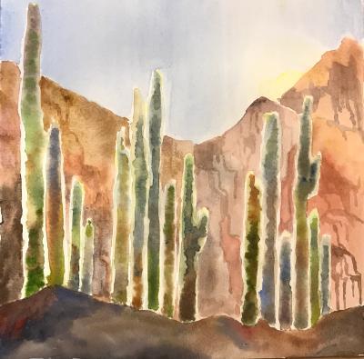 Cacti (Backlit) II