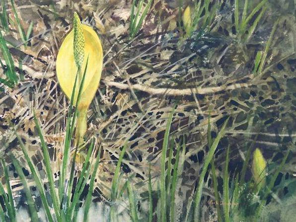 Jack E. Dorsey of  Camano Island, Northwest Fine Artist