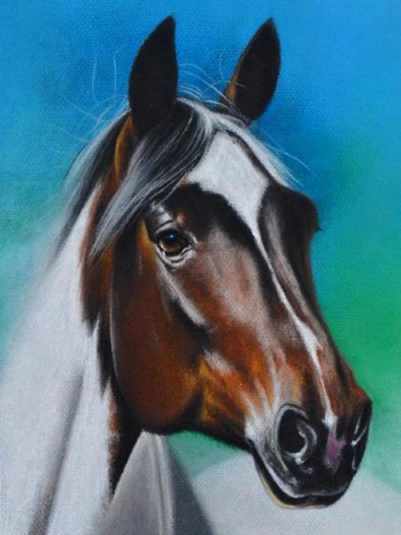 The equine beauty, 38cm x 28cm, 2020