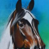 The equine beauty, 38cm x 28cm, 2020